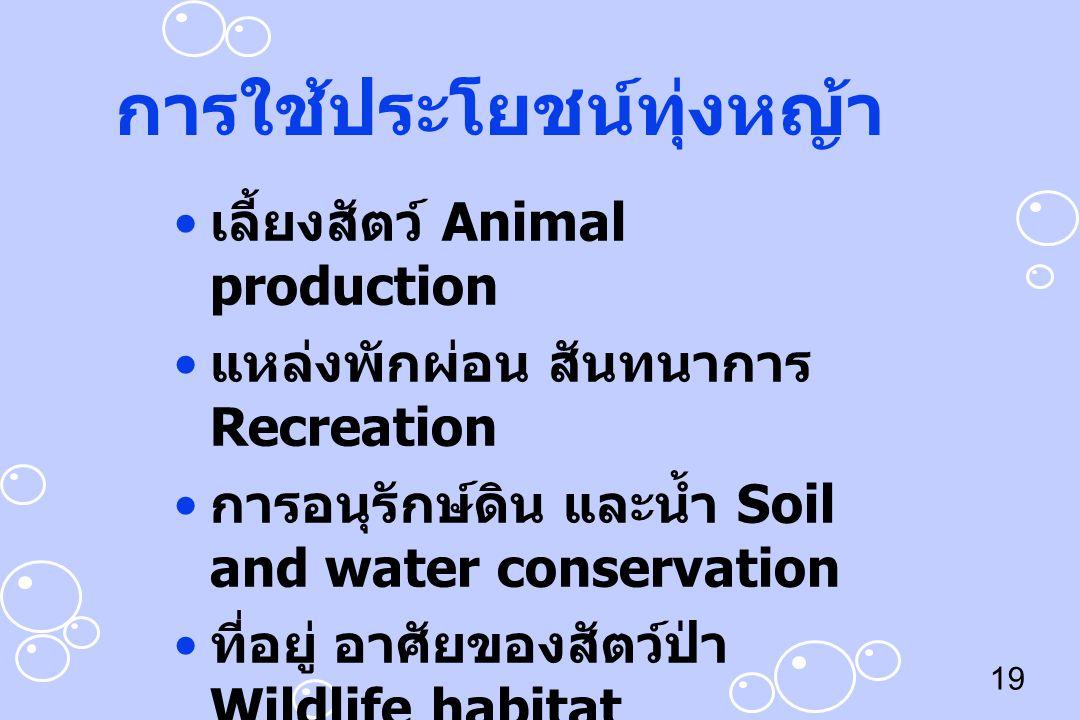19 การใช้ประโยชน์ทุ่งหญ้า เลี้ยงสัตว์ Animal production แหล่งพักผ่อน สันทนาการ Recreation การอนุรักษ์ดิน และน้ำ Soil and water conservation ที่อยู่ อา