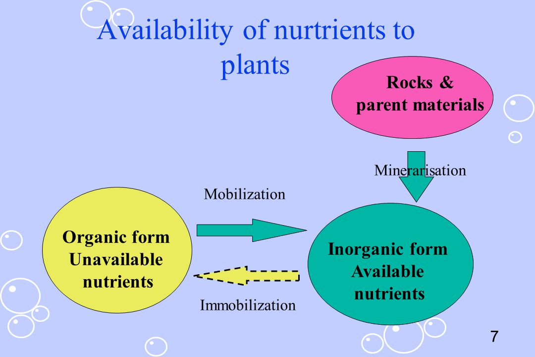 8 Sources of nutrients in pasture ecosystems Parent materials Return of excreta – urines : N & P – dung : K Fertilizer Supplement feeds Atmosphere : N2