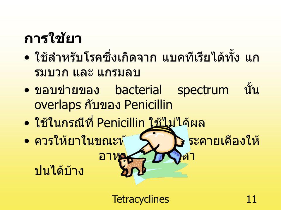 Tetracyclines11 การใช้ยา ใช้สำหรับโรคซึ่งเกิดจาก แบคทีเรียได้ทั้ง แก รมบวก และ แกรมลบ ขอบข่ายของ bacterial spectrum นั้น overlaps กับของ Penicillin ใช้ในกรณีที่ Penicillin ใช้ไม่ได้ผล ควรให้ยาในขณะท้องว่าง หากระคายเคืองให้ อาหารที่มีแร่ธาตุต่ำ ปนได้บ้าง