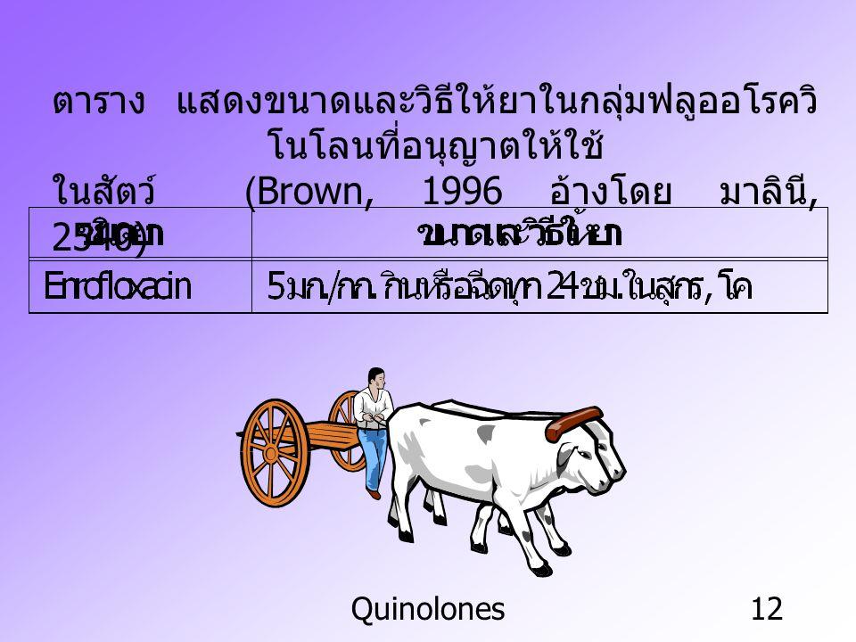 Quinolones12 ตาราง แสดงขนาดและวิธีให้ยาในกลุ่มฟลูออโรควิ โนโลนที่อนุญาตให้ใช้ ในสัตว์ (Brown, 1996 อ้างโดย มาลินี, 2540)