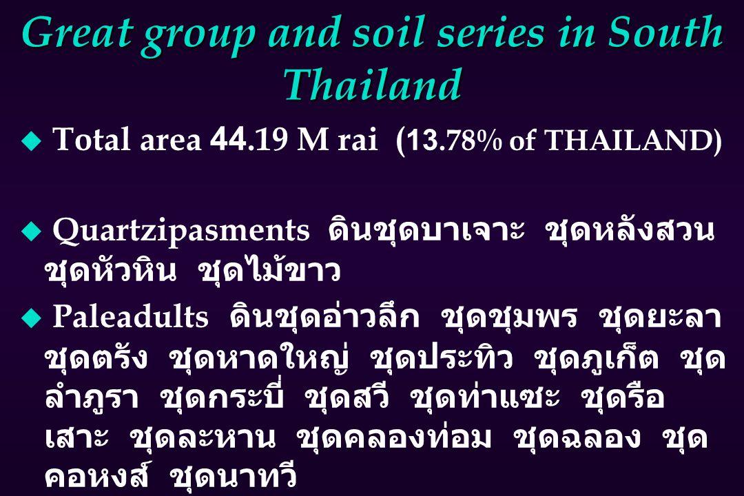 Great group and soil series in South Thailand u Total area 44.19 M rai ( 13.78% of THAILAND)  Quartzipasments ดินชุดบาเจาะ ชุดหลังสวน ชุดหัวหิน ชุดไม้ขาว  Paleadults ดินชุดอ่าวลึก ชุดชุมพร ชุดยะลา ชุดตรัง ชุดหาดใหญ่ ชุดประทิว ชุดภูเก็ต ชุด ลำภูรา ชุดกระบี่ ชุดสวี ชุดท่าแซะ ชุดรือ เสาะ ชุดละหาน ชุดคลองท่อม ชุดฉลอง ชุด คอหงส์ ชุดนาทวี