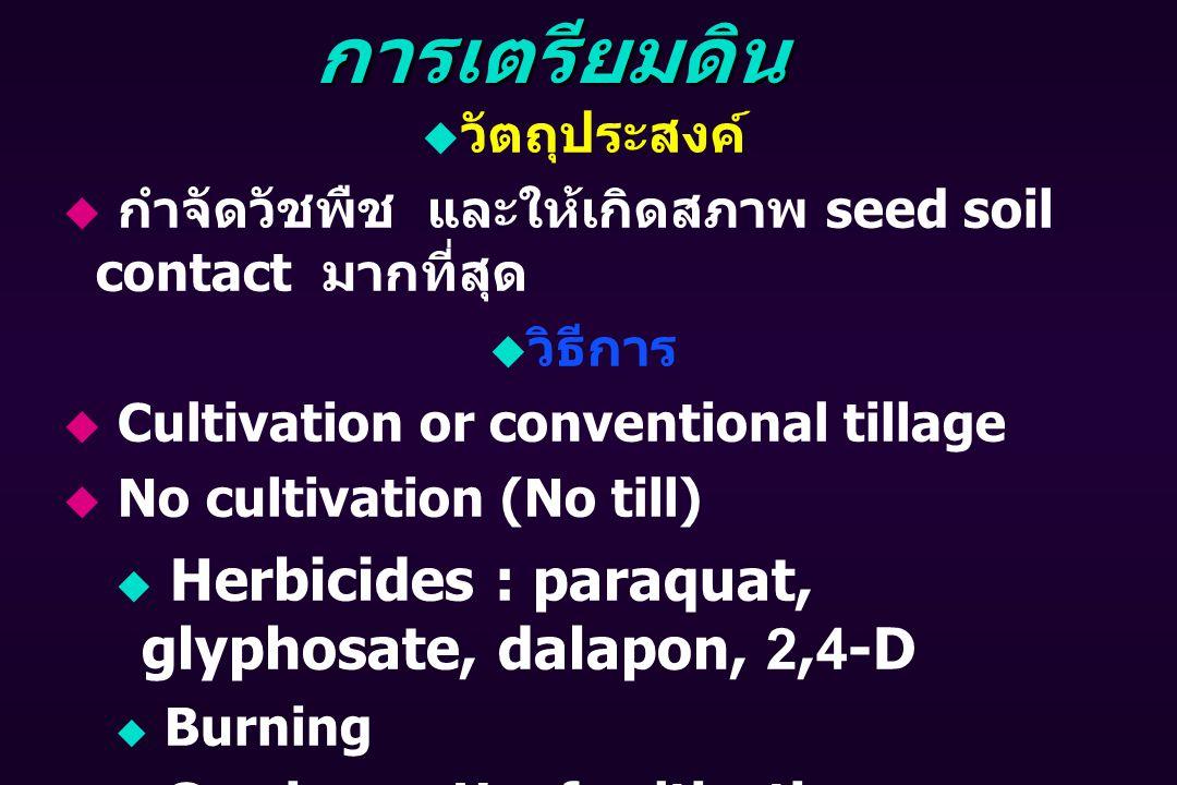 การเตรียมดิน  วัตถุประสงค์  กำจัดวัชพืช และให้เกิดสภาพ seed soil contact มากที่สุด  วิธีการ  Cultivation or conventional tillage  No cultivation (No till)  Herbicides : paraquat, glyphosate, dalapon, 2,4-D  Burning  Grazing or Hoof cultivation  Cutting