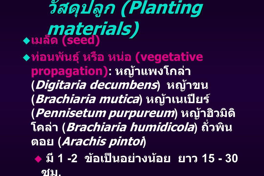 วัสดุปลูก (Planting materials)  เมล็ด (seed)  ท่อนพันธุ์ หรือ หน่อ (vegetative propagation): หญ้าแพงโกล่า (Digitaria decumbens) หญ้าขน (Brachiaria mutica) หญ้าเนเปียร์ (Pennisetum purpureum) หญ้าฮิวมิดิ โคล่า (Brachiaria humidicola) ถั่วพิน ตอย (Arachis pintoi)  มี 1 -2 ข้อเป็นอย่างน้อย ยาว 15 - 30 ซม.