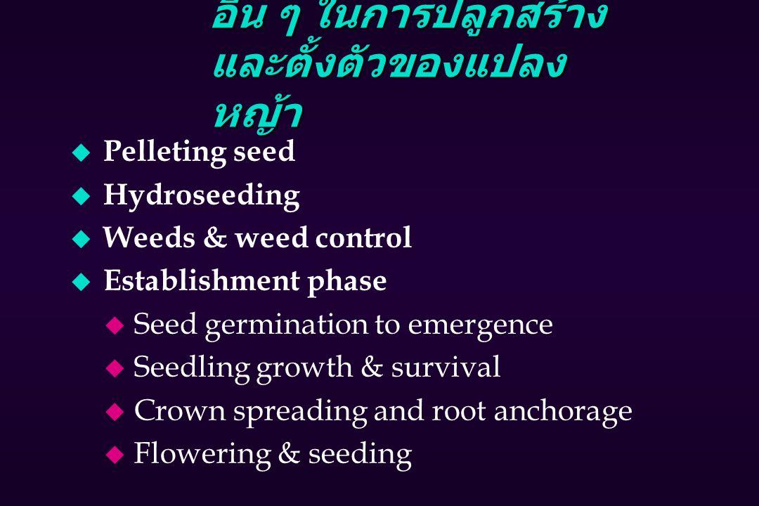อื่น ๆ ในการปลูกสร้าง และตั้งตัวของแปลง หญ้า u Pelleting seed u Hydroseeding u Weeds & weed control u Establishment phase u Seed germination to emergence u Seedling growth & survival u Crown spreading and root anchorage u Flowering & seeding