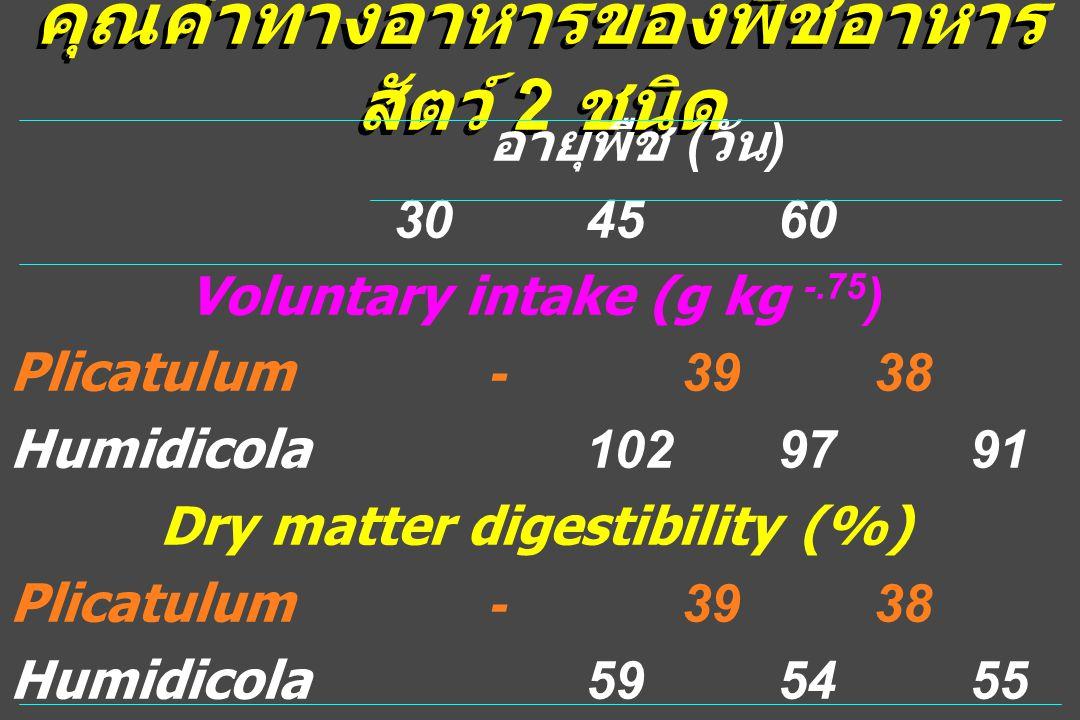 คุณค่าทางอาหารของพืชอาหาร สัตว์ 2 ชนิด อายุพืช ( วัน ) 304560 Voluntary intake (g kg -.75 ) Plicatulum-3938 Humidicola1029791 Dry matter digestibility (%) Plicatulum-3938 Humidicola595455