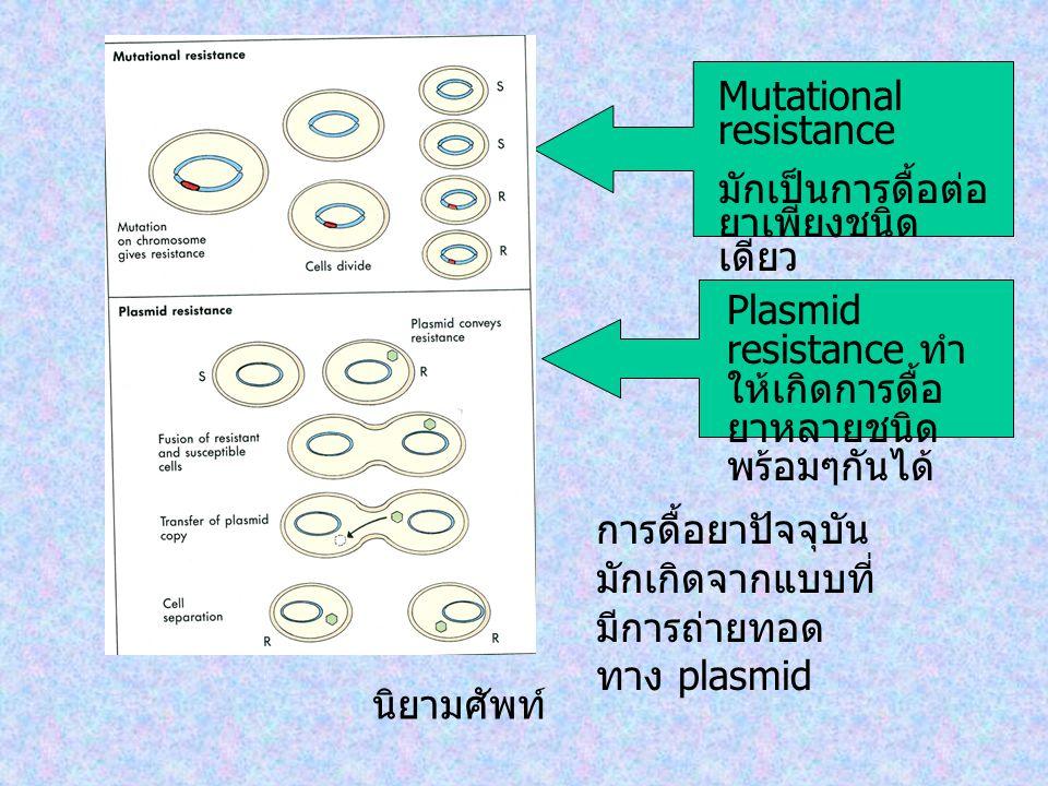Mutational resistance มักเป็นการดื้อต่อ ยาเพียงชนิด เดียว Plasmid resistance ทำ ให้เกิดการดื้อ ยาหลายชนิด พร้อมๆกันได้ นิยามศัพท์ การดื้อยาปัจจุบัน มั