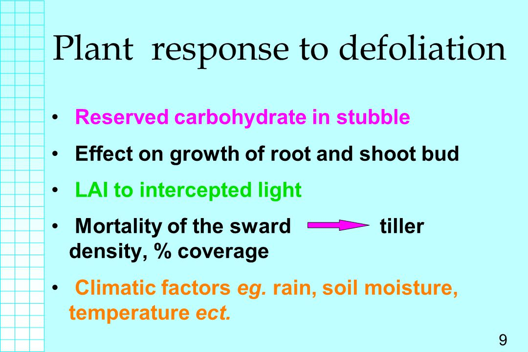 10 Effect of defoliation to physical environment grazing regimes water run off water penitration evaporation wilting after drought frost damage growth form linient less high less quicker less less change heavy higher less higher less more tillering