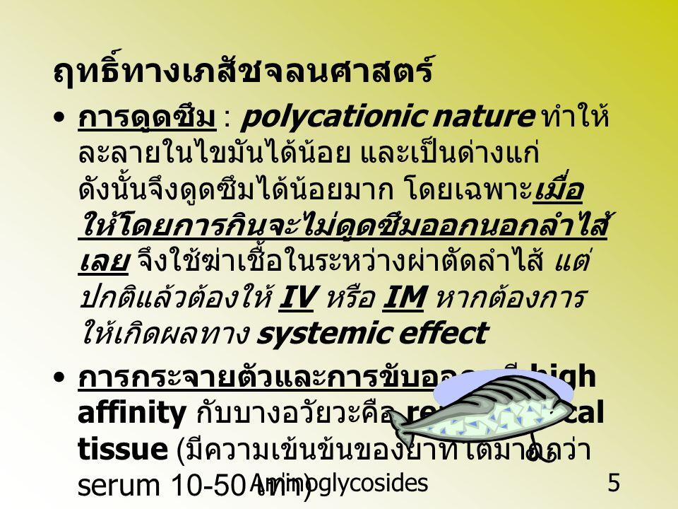 Aminoglycosides5 ฤทธิ์ทางเภสัชจลนศาสตร์ การดูดซึม : polycationic nature ทำให้ ละลายในไขมันได้น้อย และเป็นด่างแก่ ดังนั้นจึงดูดซึมได้น้อยมาก โดยเฉพาะเม