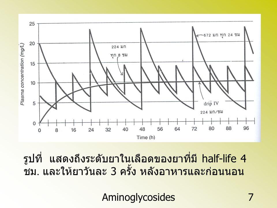 Aminoglycosides7 รูปที่ แสดงถึงระดับยาในเลือดของยาที่มี half-life 4 ชม. และให้ยาวันละ 3 ครั้ง หลังอาหารและก่อนนอน