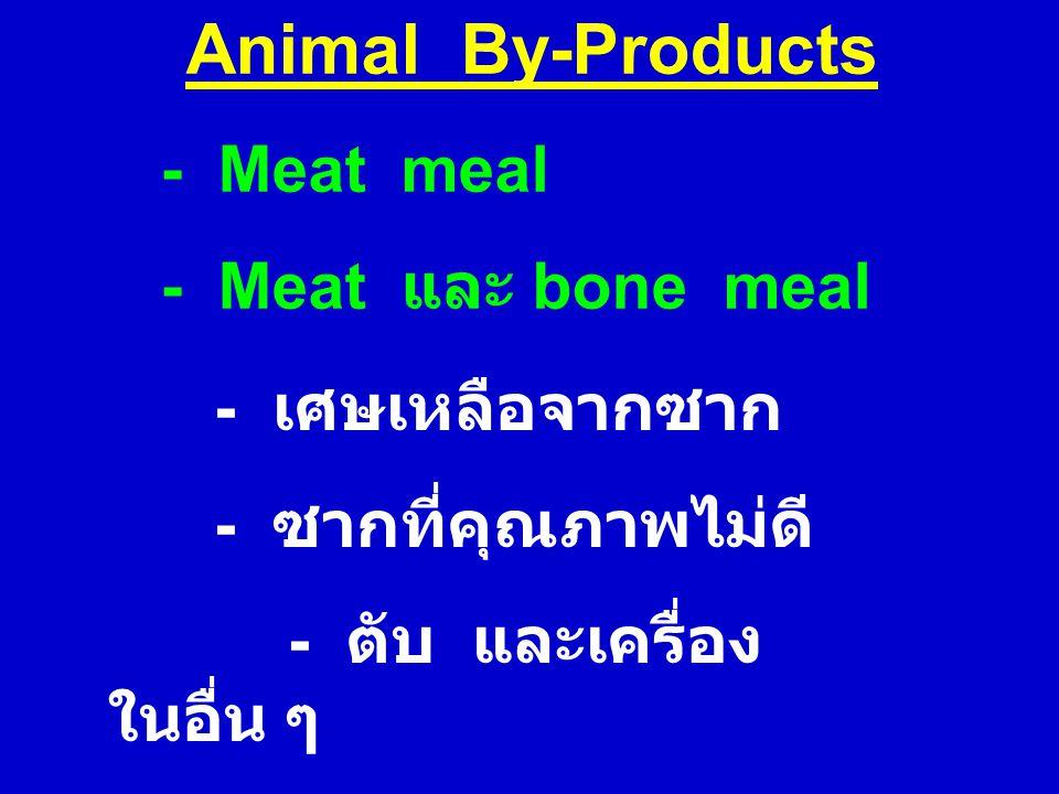Animal By-Products - Meat meal - Meat และ bone meal - เศษเหลือจากซาก - ซากที่คุณภาพไม่ดี - ตับ และเครื่อง ในอื่น ๆ - ไม่มี ขน กีบ เขา และหนังผสมอยู่