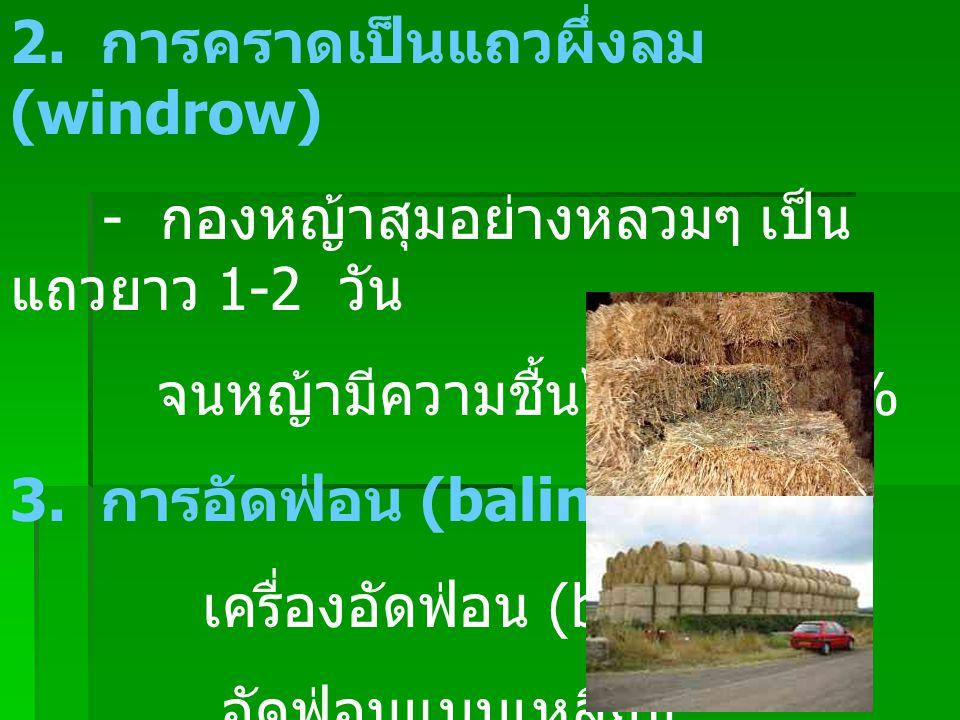 2. การคราดเป็นแถวผึ่งลม (windrow) - กองหญ้าสุมอย่างหลวมๆ เป็น แถวยาว 1-2 วัน จนหญ้ามีความชื้นไม่เกิน 20% 3. การอัดฟ่อน (baling) เครื่องอัดฟ่อน (baler)