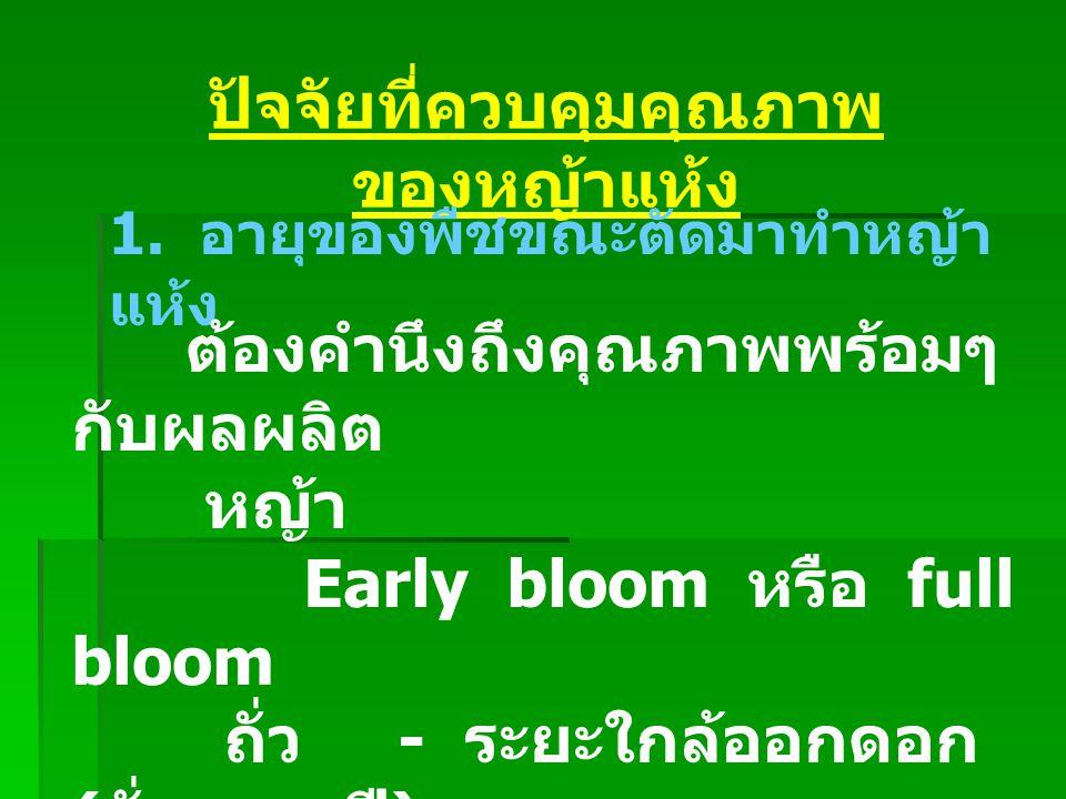 ปัจจัยที่ควบคุมคุณภาพ ของหญ้าแห้ง 1. อายุของพืชขณะตัดมาทำหญ้า แห้ง ต้องคำนึงถึงคุณภาพพร้อมๆ กับผลผลิต หญ้า Early bloom หรือ full bloom ถั่ว - ระยะใกล้
