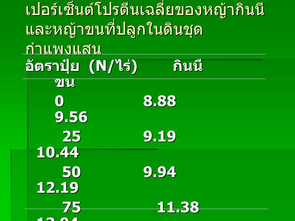อิทธิพลของการตัดต่อระดับ โปรตีนหญ้า หญ้า 3 wks 6 wks D decumbens 15.7 7.5 B mutica 16.3 6.3 P purpureum 16.3 7.3 P maximum 13.6 8.9 B ruziziensis 12.0 8.0