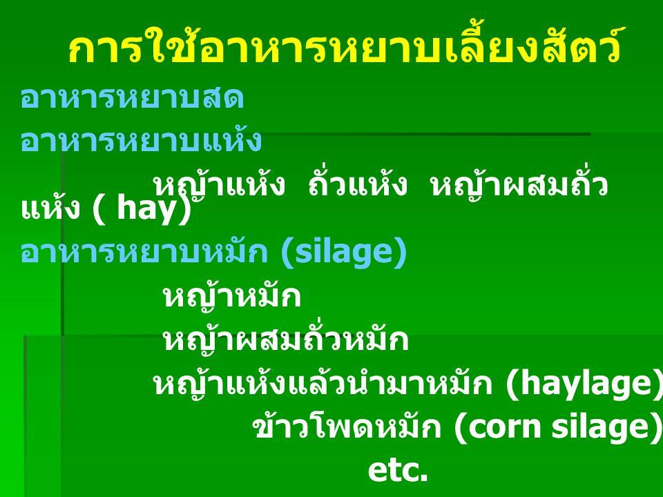 การใช้อาหารหยาบเลี้ยงสัตว์ อาหารหยาบสด อาหารหยาบแห้ง หญ้าแห้ง ถั่วแห้ง หญ้าผสมถั่ว แห้ง ( hay) อาหารหยาบหมัก (silage) หญ้าหมัก หญ้าผสมถั่วหมัก หญ้าแห้