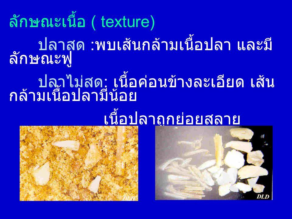 ลักษณะเนื้อ ( texture) ปลาสด : พบเส้นกล้ามเนื้อปลา และมี ลักษณะฟู ปลาไม่สด : เนื้อค่อนข้างละเอียด เส้น กล้ามเนื้อปลามีน้อย เนื้อปลาถูกย่อยสลาย