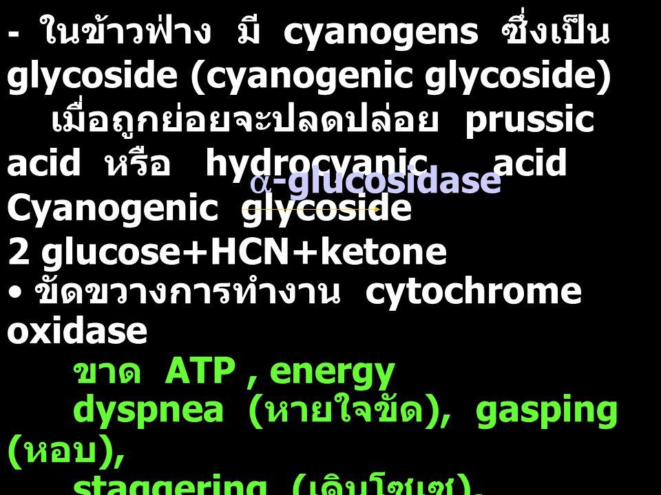 - ในข้าวฟ่าง มี cyanogens ซึ่งเป็น glycoside (cyanogenic glycoside) เมื่อถูกย่อยจะปลดปล่อย prussic acid หรือ hydrocyanic acid Cyanogenic glycoside 2 g