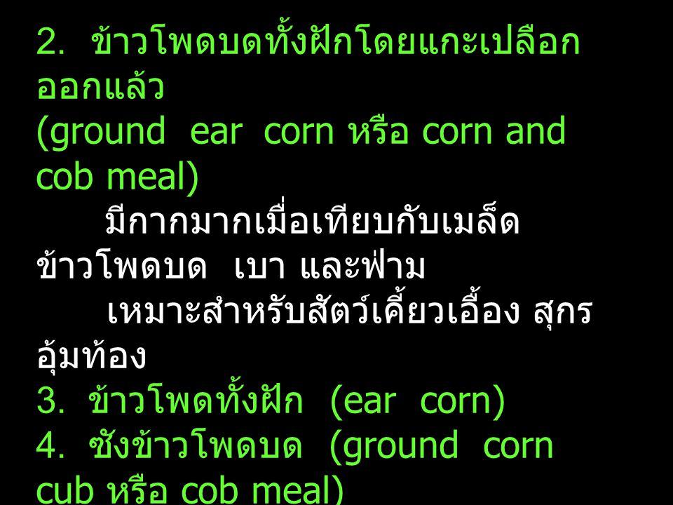 2. ข้าวโพดบดทั้งฝักโดยแกะเปลือก ออกแล้ว (ground ear corn หรือ corn and cob meal) มีกากมากเมื่อเทียบกับเมล็ด ข้าวโพดบด เบา และฟ่าม เหมาะสำหรับสัตว์เคี้