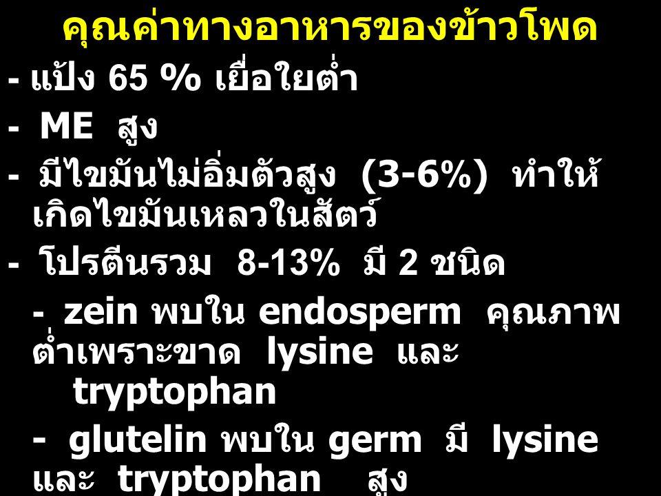 คุณค่าทางอาหารของข้าวโพด - แป้ง 65 % เยื่อใยต่ำ - ME สูง - มีไขมันไม่อิ่มตัวสูง (3-6%) ทำให้ เกิดไขมันเหลวในสัตว์ - โปรตีนรวม 8-13% มี 2 ชนิด - zein พ