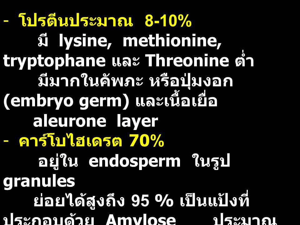 - โปรตีนประมาณ 8-10% มี lysine, methionine, tryptophane และ Threonine ต่ำ มีมากในคัพภะ หรือปุ่มงอก (embryo germ) และเนื้อเยื่อ aleurone layer - คาร์โบไฮเดรต 70% อยู่ใน endosperm ในรูป granules ย่อยได้สูงถึง 95 % เป็นแป้งที่ ประกอบด้วย Amylose ประมาณ 25 % และ amylopectin 75 % - ไขมัน 1-6% เป็น pamitic, oleic และ linoleic