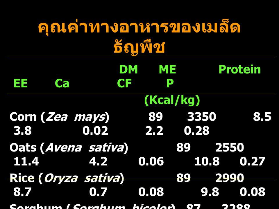 คุณค่าทางอาหารของเมล็ด ธัญพืช DM ME Protein EE Ca CF P (Kcal/kg) Corn (Zea mays) 89 3350 8.5 3.8 0.02 2.2 0.28 Oats (Avena sativa) 89 2550 11.4 4.2 0.06 10.8 0.27 Rice (Oryza sativa) 89 2990 8.7 0.7 0.08 9.8 0.08 Sorghum (Sorghum bicolor) 87 3288 8.8 2.9 0.04 2.3 0.30 Wheat (Triticum aestivum) 87 2900 14.1 2.5 0.05 3.0 0.37