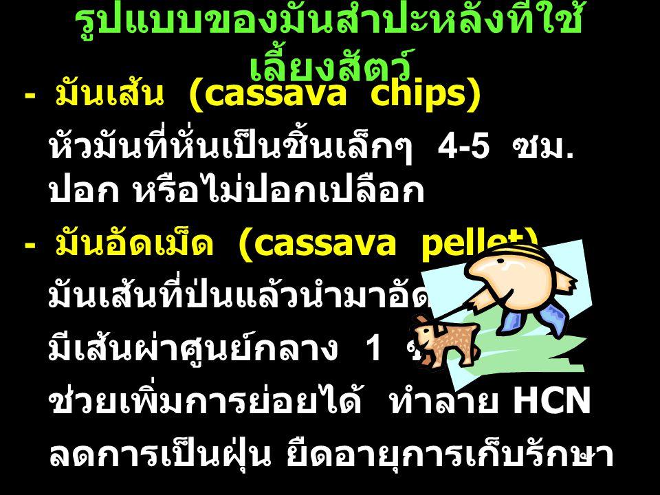 รูปแบบของมันสำปะหลังที่ใช้ เลี้ยงสัตว์ - มันเส้น (cassava chips) หัวมันที่หั่นเป็นชิ้นเล็กๆ 4-5 ซม. ปอก หรือไม่ปอกเปลือก - มันอัดเม็ด (cassava pellet)