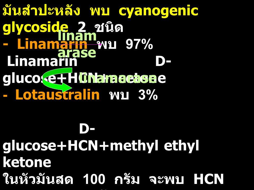 มันสำปะหลัง พบ cyanogenic glycoside 2 ชนิด - Linamarin พบ 97% Linamarin D- glucose+HCN+acetone - Lotaustralin พบ 3% D- glucose+HCN+methyl ethyl ketone ในหัวมันสด 100 กรัม จะพบ HCN 2.4-15.6 มิลลิกรัม - หั่นแล้วผึ่งทิ้งไว้ 24 ชม.