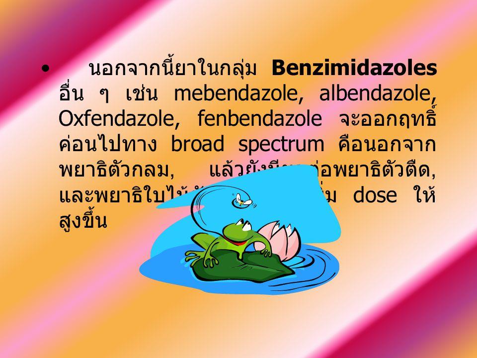 นอกจากนี้ยาในกลุ่ม Benzimidazoles อื่น ๆ เช่น mebendazole, albendazole, Oxfendazole, fenbendazole จะออกฤทธิ์ ค่อนไปทาง broad spectrum คือนอกจาก พยาธิต