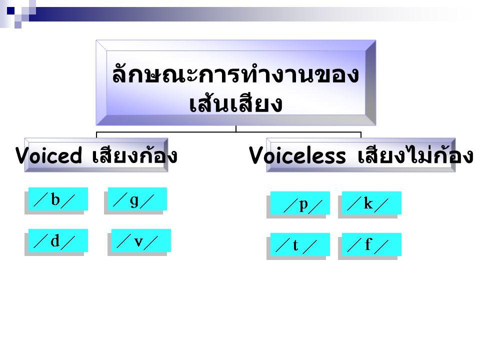 การจำแนกเสียงพยัญชนะ 1.ลักษณะการทำงานของเส้นเสียง (Phonation) 2.