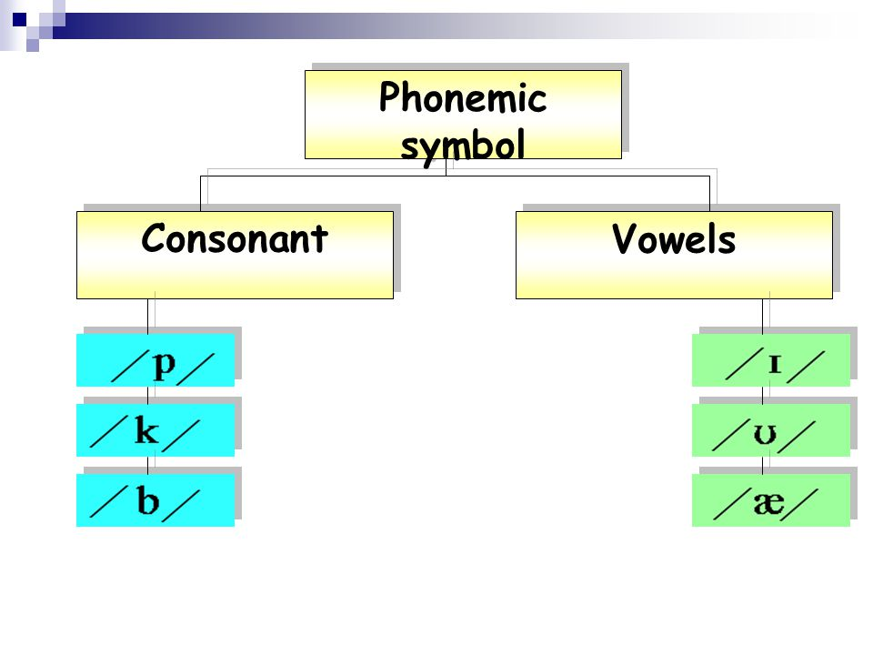 Phonemic script A set of phonemic symbols put together to show how words or phrases are pronounced.