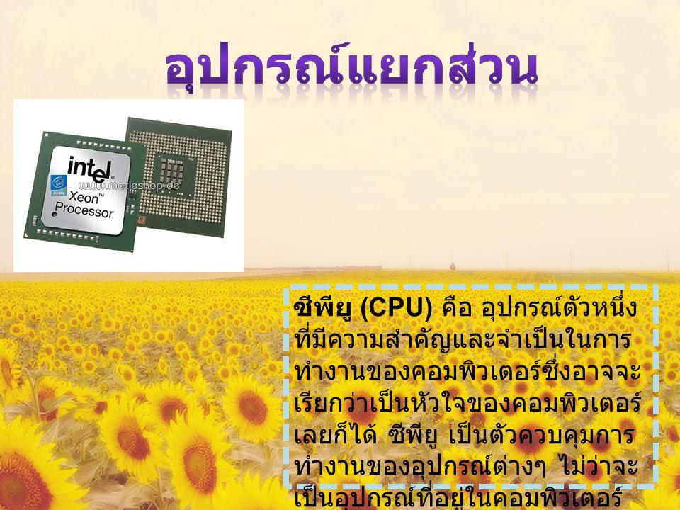 ซีพียู (CPU) คือ อุปกรณ์ตัวหนึ่ง ที่มีความสำคัญและจำเป็นในการ ทำงานของคอมพิวเตอร์ซึ่งอาจจะ เรียกว่าเป็นหัวใจของคอมพิวเตอร์ เลยก็ได้ ซีพียู เป็นตัวควบคุมการ ทำงานของอุปกรณ์ต่างๆ ไม่ว่าจะ เป็นอุปกรณ์ที่อยู่ในคอมพิวเตอร์ หรืออุปกรณ์ต่อพ่วงที่ต่อร่วมกับ คอมพิวเตอร์