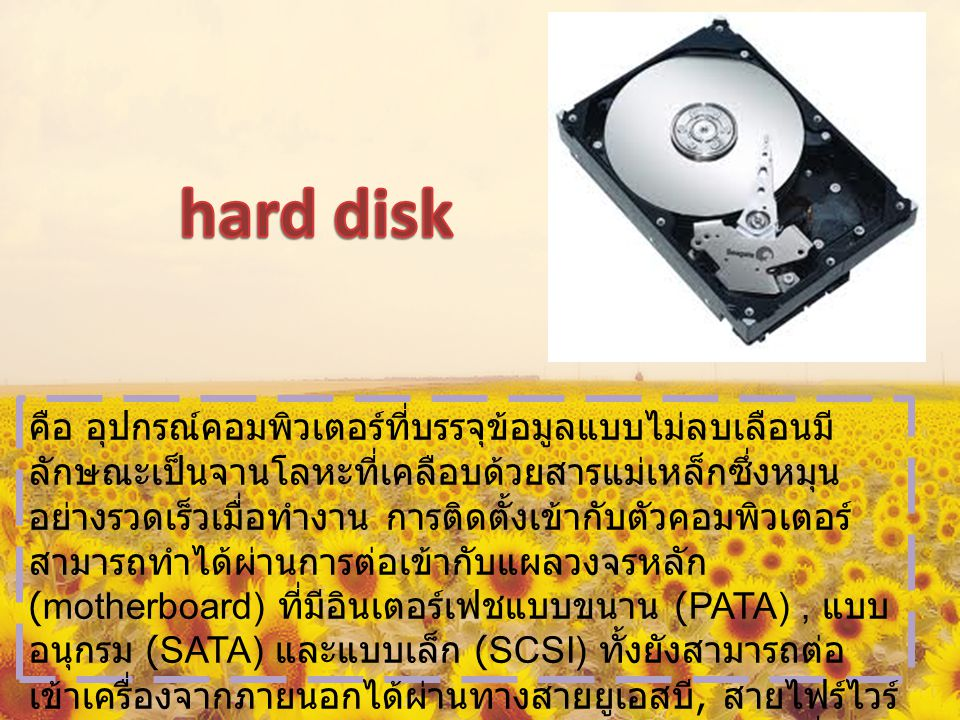 ซอฟต์แวร์ (OS,APP) Adobe photoshop -winamp -antivirus -nero -powerDVD -Microsoft office
