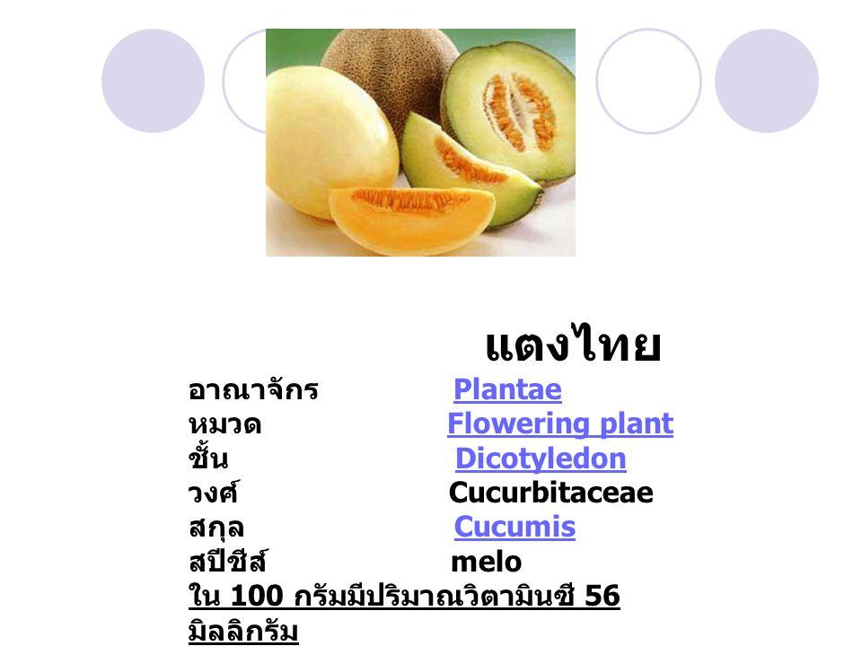 แตงไทย อาณาจักร PlantaePlantae หมวด Flowering plantFlowering plant ชั้น DicotyledonDicotyledon วงศ์ Cucurbitaceae สกุล CucumisCucumis สปีชีส์ melo ใน 100 กรัมมีปริมาณวิตามินซี 56 มิลลิกรัม