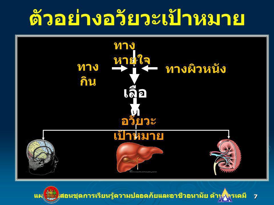 7 ตัวอย่างอวัยวะเป้าหมาย อวัยวะ เป้าหมาย แผนการสอนชุดการเรียนรู้ความปลอดภัยและอาชีวอนามัย ด้านสารเคมี ทาง หายใจ ทาง กิน ทางผิวหนัง เลือ ด