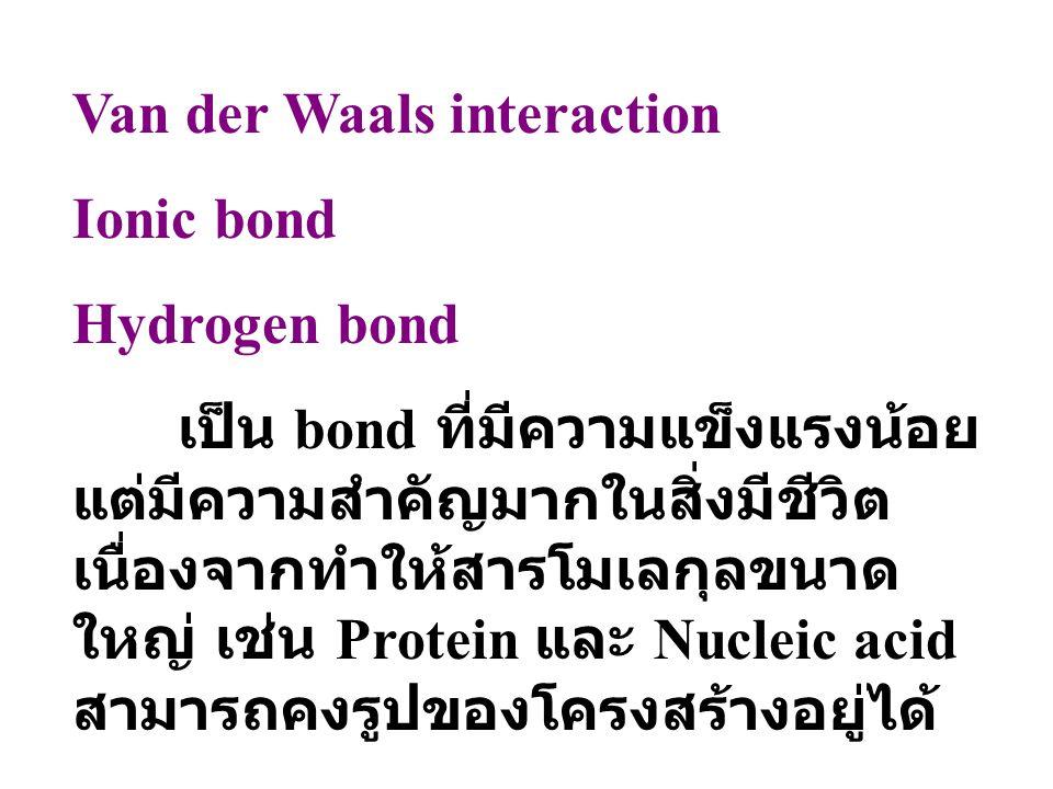 Van der Waals interaction Ionic bond Hydrogen bond เป็น bond ที่มีความแข็งแรงน้อย แต่มีความสำคัญมากในสิ่งมีชีวิต เนื่องจากทำให้สารโมเลกุลขนาด ใหญ่ เช่น Protein และ Nucleic acid สามารถคงรูปของโครงสร้างอยู่ได้
