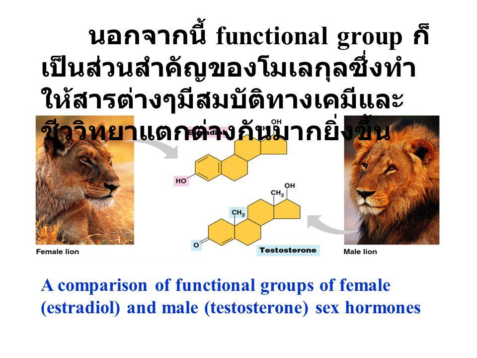 A comparison of functional groups of female (estradiol) and male (testosterone) sex hormones นอกจากนี้ functional group ก็ เป็นส่วนสำคัญของโมเลกุลซึ่งทำ ให้สารต่างๆมีสมบัติทางเคมีและ ชีววิทยาแตกต่างกันมากยิ่งขึ้น