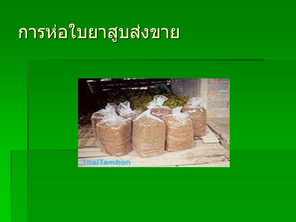 การห่อใบยาสูบส่งขาย