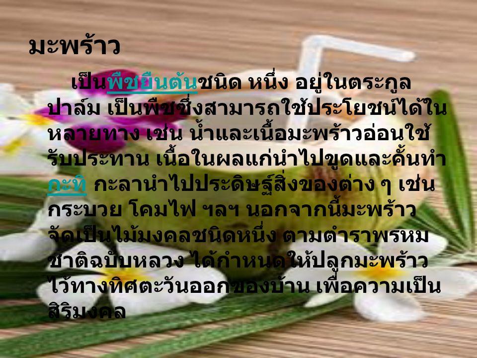 มะพร้าว เป็นพืชยืนต้นชนิด หนึ่ง อยู่ในตระกูล ปาล์ม เป็นพืชซึ่งสามารถใช้ประโยชน์ได้ใน หลายทาง เช่น น้ำและเนื้อมะพร้าวอ่อนใช้ รับประทาน เนื้อในผลแก่นำไปขูดและคั้นทำ กะทิ กะลานำไปประดิษฐ์สิ่งของต่าง ๆ เช่น กระบวย โคมไฟ ฯลฯ นอกจากนี้มะพร้าว จัดเป็นไม้มงคลชนิดหนึ่ง ตามตำราพรหม ชาติฉบับหลวง ได้กำหนดให้ปลูกมะพร้าว ไว้ทางทิศตะวันออกของบ้าน เพื่อความเป็น สิริมงคลพืชยืนต้น กะทิ