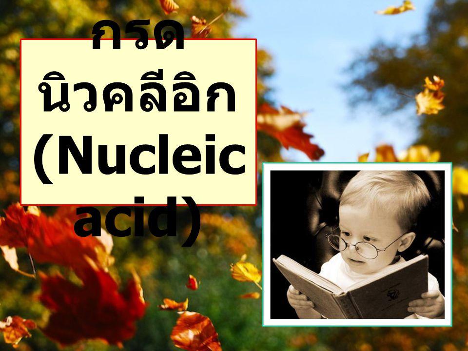 กรด นิวคลีอิก (Nucleic acid)