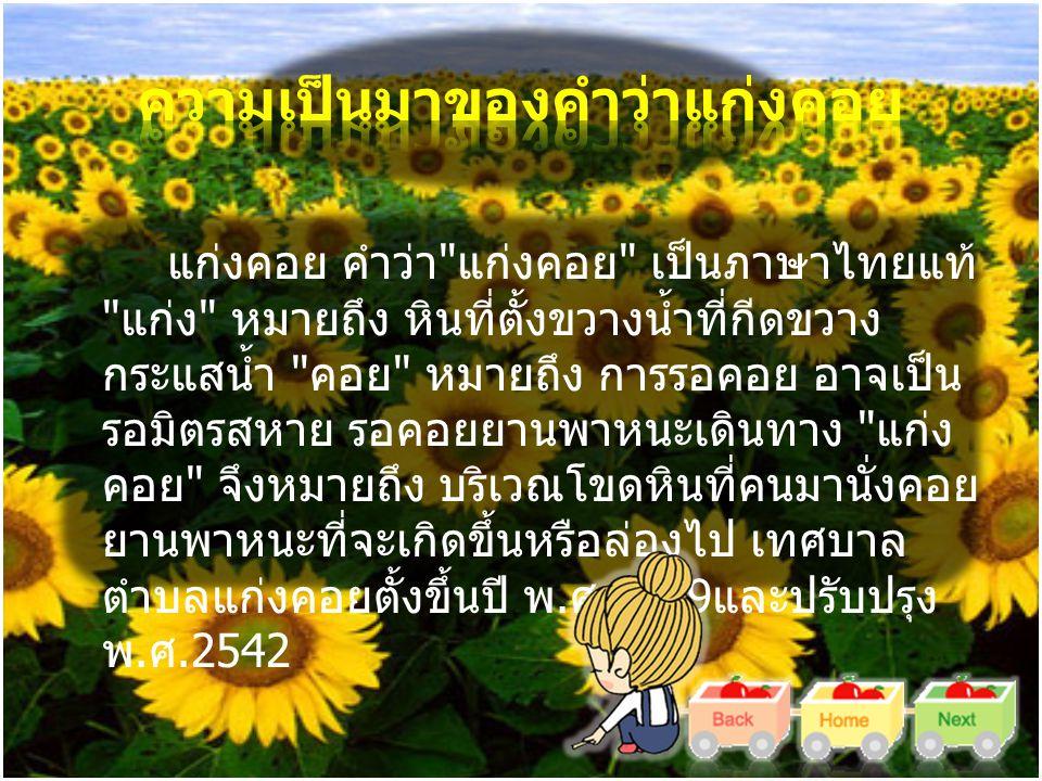 แก่งคอย คำว่า แก่งคอย เป็นภาษาไทยแท้ แก่ง หมายถึง หินที่ตั้งขวางน้ำที่กีดขวาง กระแสน้ำ คอย หมายถึง การรอคอย อาจเป็น รอมิตรสหาย รอคอยยานพาหนะเดินทาง แก่ง คอย จึงหมายถึง บริเวณโขดหินที่คนมานั่งคอย ยานพาหนะที่จะเกิดขึ้นหรือล่องไป เทศบาล ตำบลแก่งคอยตั้งขึ้นปี พ.