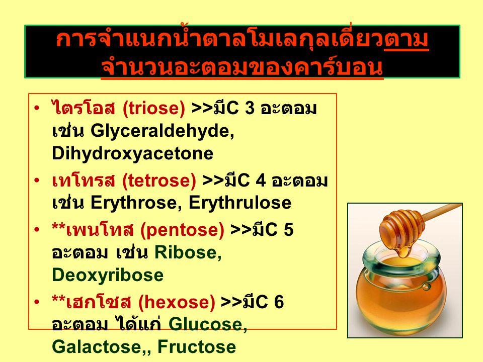 การจำแนกน้ำตาลโมเลกุลเดี่ยวตาม จำนวนอะตอมของคาร์บอน ไตรโอส (triose) >> มี C 3 อะตอม เช่น Glyceraldehyde, Dihydroxyacetone เทโทรส (tetrose) >> มี C 4 อะตอม เช่น Erythrose, Erythrulose ** เพนโทส (pentose) >> มี C 5 อะตอม เช่น Ribose, Deoxyribose ** เฮกโซส (hexose) >> มี C 6 อะตอม ได้แก่ Glucose, Galactose,, Fructose เฮปโทส (heptose) >> มี C 7 อะตอม เช่น Sedoheptulose