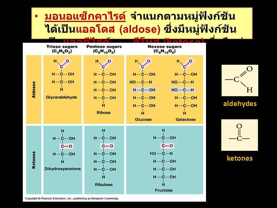 มอนอแซ็กคาไรด์ จำแนกตามหมู่ฟังก์ชัน ได้เป็นแอลโดส (aldose) ซึ่งมีหมู่ฟังก์ชัน เป็นแอลดีไฮด์ และคีโทส (ketose) ซึ่งมีหมู่ ฟังก์ชันเป็นคีโตน aldehydes ketones