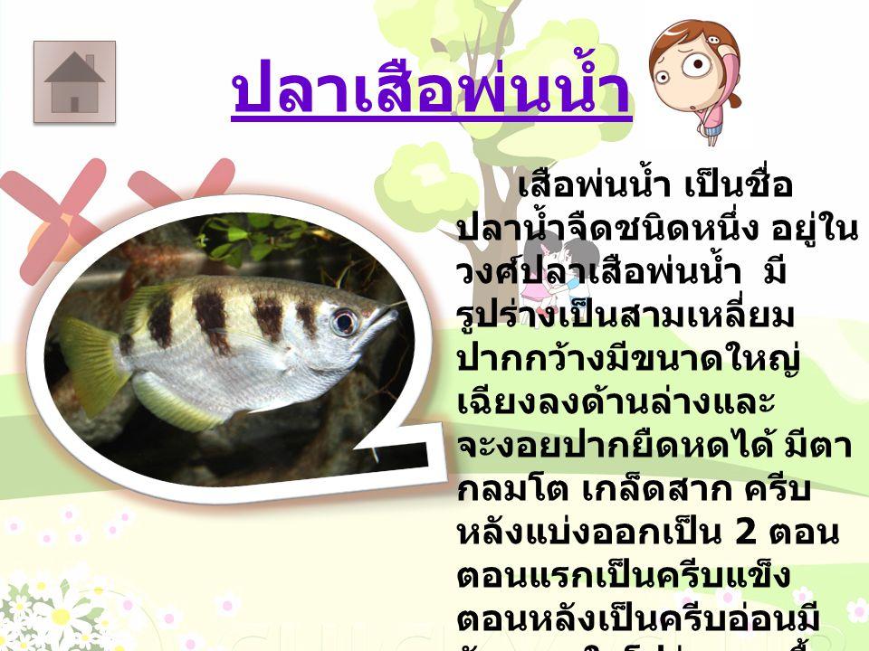 ปลาเสือพ่นน้ำ เสือพ่นน้ำ เป็นชื่อ ปลาน้ำจืดชนิดหนึ่ง อยู่ใน วงศ์ปลาเสือพ่นน้ำ มี รูปร่างเป็นสามเหลี่ยม ปากกว้างมีขนาดใหญ่ เฉียงลงด้านล่างและ จะงอยปากย