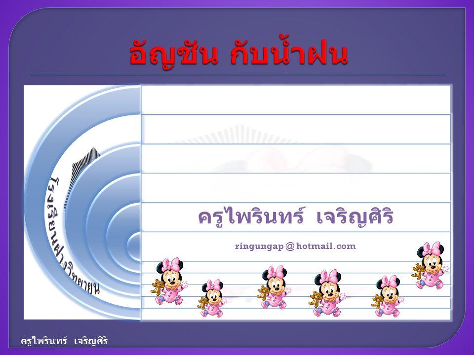 ครูไพรินทร์ เจริญศิริ ringungap @ hotmail.com ครูไพรินทร์ เจริญศิริ