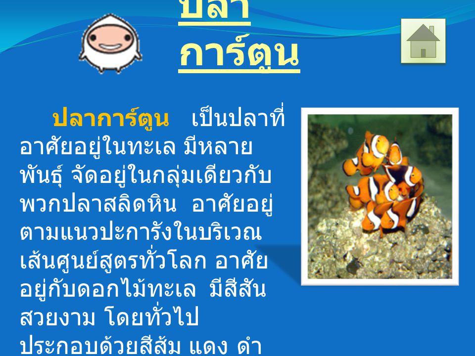 ปลา การ์ตูน ปลาการ์ตูน เป็นปลาที่ อาศัยอยู่ในทะเล มีหลาย พันธุ์ จัดอยู่ในกลุ่มเดียวกับ พวกปลาสลิดหิน อาศัยอยู่ ตามแนวปะการังในบริเวณ เส้นศูนย์สูตรทั่วโลก อาศัย อยู่กับดอกไม้ทะเล มีสีสัน สวยงาม โดยทั่วไป ประกอบด้วยสีส้ม แดง ดำ เหลือง และมีสีขาวพาดกลาง ลำตัว 1-3 แถบ ปลาการ์ตูน อยู่กันเป็นครอบครัว กิน แพลงก์ตอนเป็นอาหาร