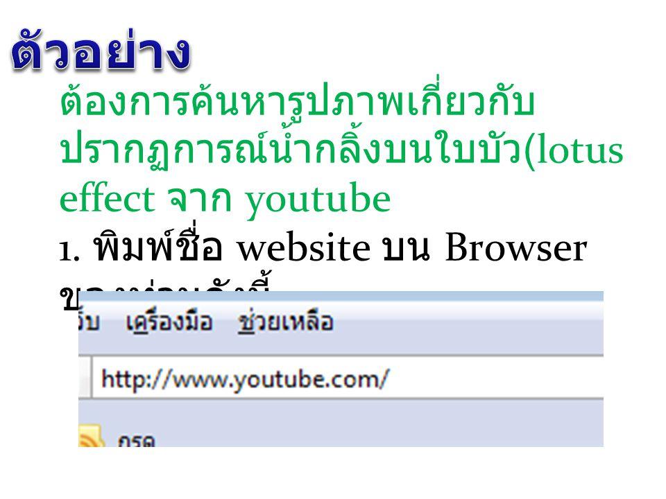 ต้องการค้นหารูปภาพเกี่ยวกับ ปรากฏการณ์น้ำกลิ้งบนใบบัว (lotus effect จาก youtube 1. พิมพ์ชื่อ website บน Browser ของท่านดังนี้