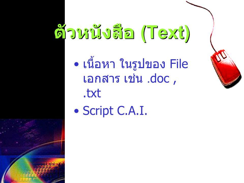 ตัวหนังสือ (Text) เนื้อหา ในรูปของ File เอกสาร เช่น.doc,.txt Script C.A.I.