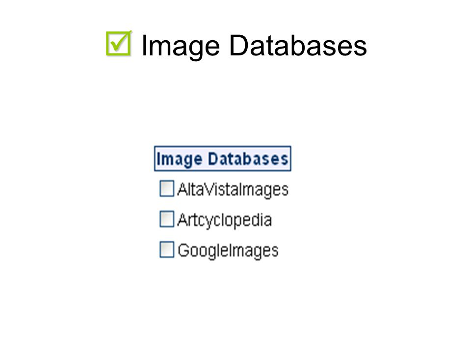   Image Databases