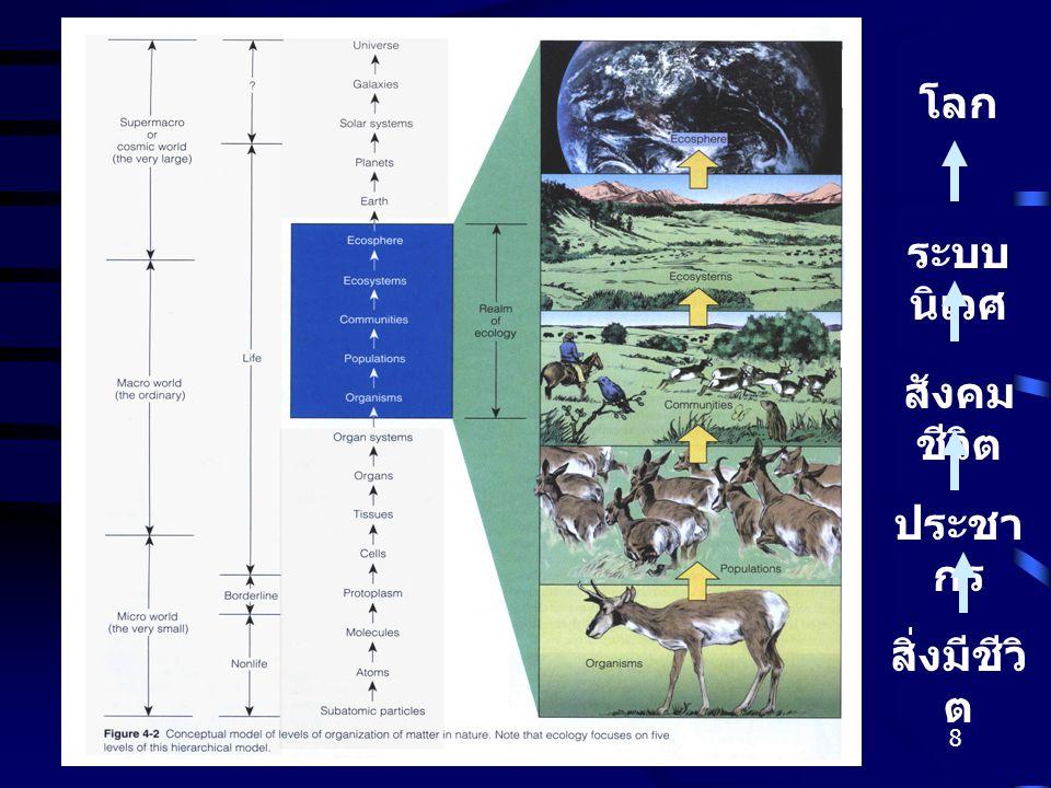 Gajaseni, 20018 สิ่งมีชีวิ ต ประชา กร สังคม ชีวิต ระบบ นิเวศ โลก