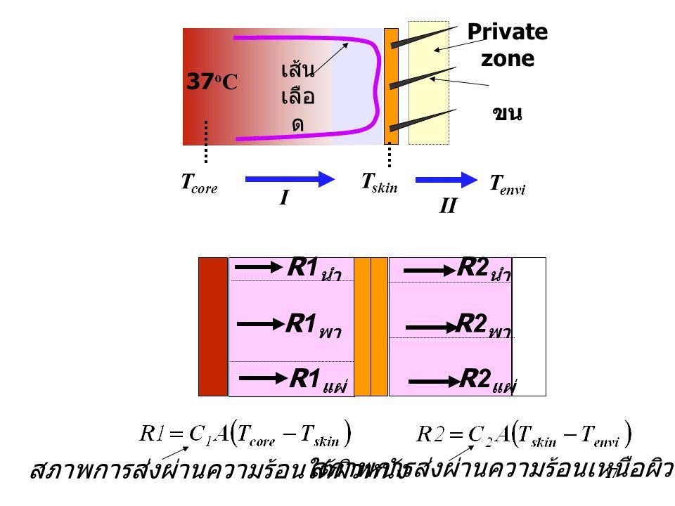 17 T envi T core T skin I II 37 o C Private zone ขน เส้น เลือ ด R2 พา R2 นำ R2 แผ่ R1 พา R1 นำ R1 แผ่ สภาพการส่งผ่านความร้อนใต้ผิวหนัง สภาพการส่งผ่านค
