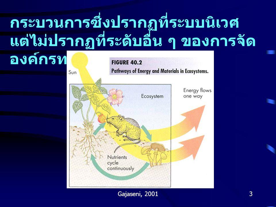 Gajaseni, 20013 กระบวนการซึ่งปรากฏที่ระบบนิเวศ แต่ไม่ปรากฏที่ระดับอื่น ๆ ของการจัด องค์กรทางชีววิทยาคืออะไร ?
